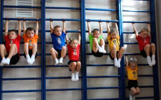 Нужно ли проходить курсовую подготовку для учителя физкультуры?