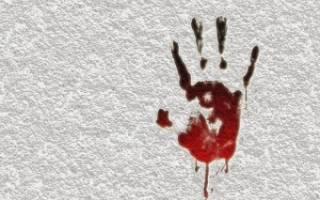 Сколько двют за убийство с особой жестокостью