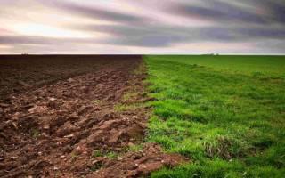 Законно ли суд обязывает меня занять земли общего пользования?