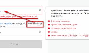 Примерный пароль для госуслуг