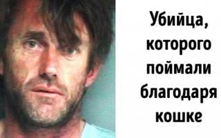 Полиция закрыла глаза на попытку убийства человека