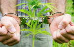 Какое наказание за употребление наркосодержащих веществ