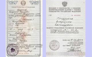 Вкладыш о приобретении гражданства россии