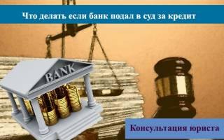 Истец подал иск на возврат задолженности по кредиту
