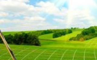 Какова процедура выявления не разграниченных земельных участков?