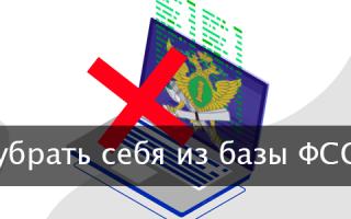В какие сроки исчезнет информация в базе ФССП?