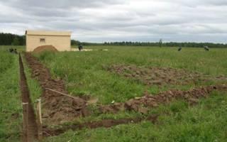 Можно ли участнику боевых действий получить земельный участок?