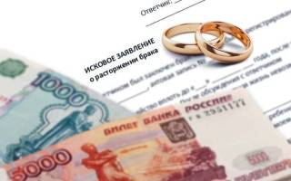 Утеряно дело о разводе и алиментах