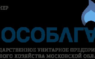 Мособлгаз договор на техническое обслуживание газового оборудования